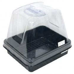 Platinium - Tray mini serre 12