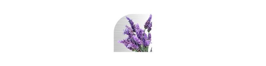 Stimulator flowering